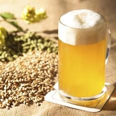 beer_6x6cm_300dpi_233x233